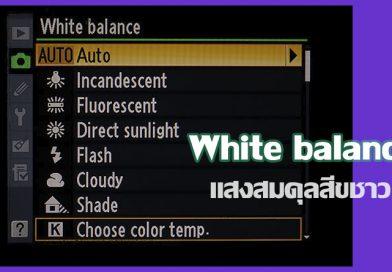 White balance แสงสมดุลสีขาว