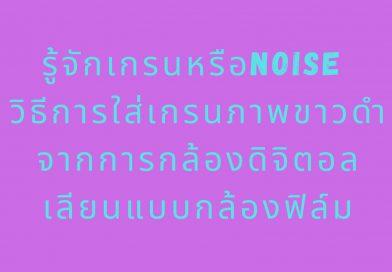 niose